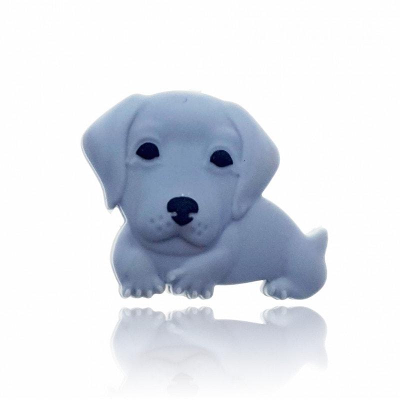 Labrador Perle farbig